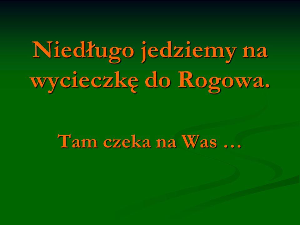 Niedługo jedziemy na wycieczkę do Rogowa. Tam czeka na Was …