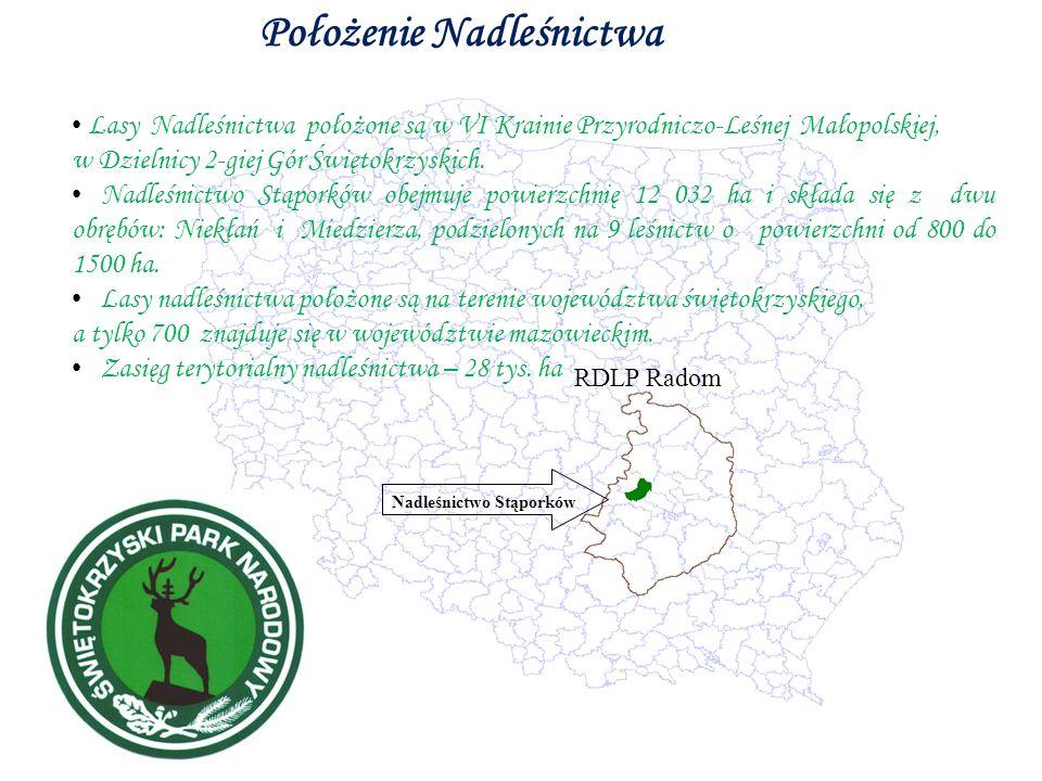 Położenie Nadleśnictwa RDLP Radom Nadleśnictwo Stąporków Lasy Nadleśnictwa położone są w VI Krainie Przyrodniczo-Leśnej Małopolskiej, w Dzielnicy 2-giej Gór Świętokrzyskich.