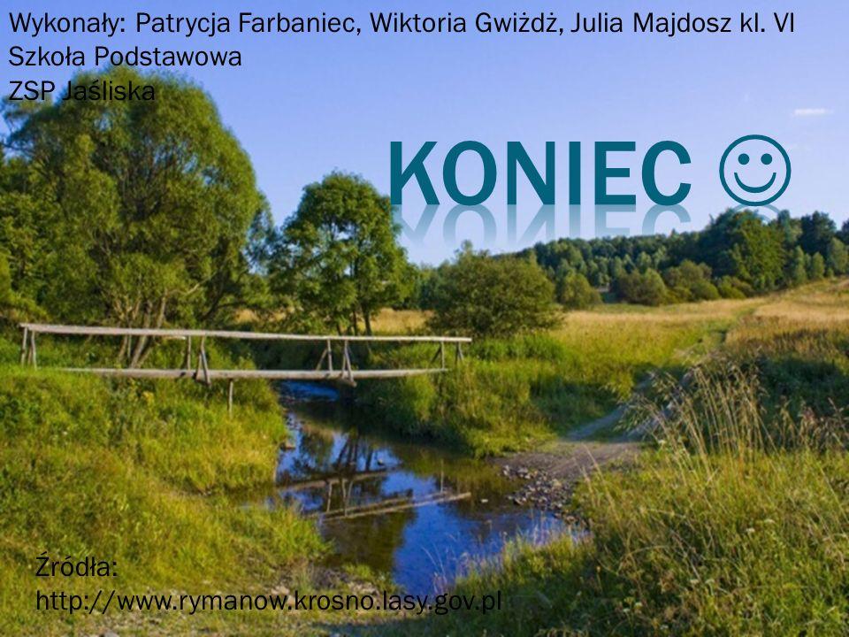 Wykonały: Patrycja Farbaniec, Wiktoria Gwiżdż, Julia Majdosz kl. VI Szkoła Podstawowa ZSP Jaśliska Źródła: http://www.rymanow.krosno.lasy.gov.pl