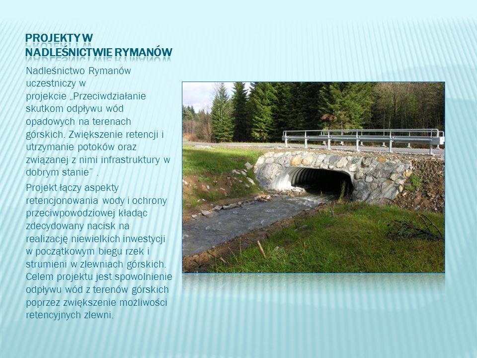 """Nadleśnictwo Rymanów uczestniczy w projekcie """"Przeciwdziałanie skutkom odpływu wód opadowych na terenach górskich. Zwiększenie retencji i utrzymanie p"""