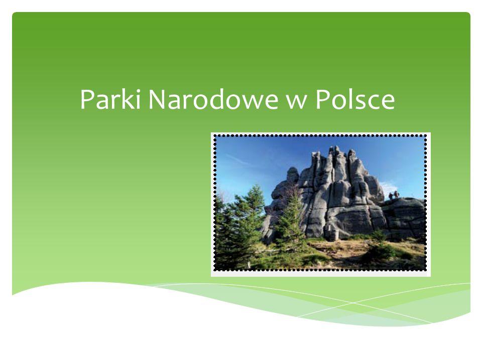 data utworzenia symbol/logopołożenieosobliwości przyrodnicze 1950 r.jeleńGóry Świętokrzyskie są najstarszymi górami w Polsce i w Europie, ich największą osobliwością są gołoborza Świętokrzyski Park Narodowy