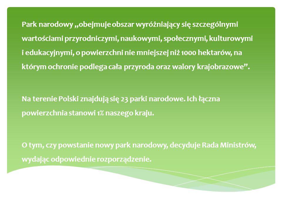 """Park narodowy """"obejmuje obszar wyróżniający się szczególnymi wartościami przyrodniczymi, naukowymi, społecznymi, kulturowymi i edukacyjnymi, o powierz"""