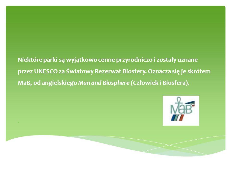 data utworzenia symbol/logopołożenieosobliwości przyrodnicze 1954 r.okrzyn jelenina terenie tego parku znajduje się jedyne w Polsce stanowisko okrzynu jeleniego i rogownicy alpejskiej Babiogórski Park Narodowy