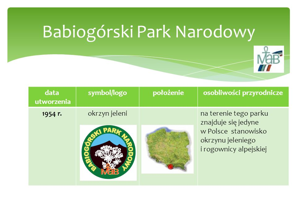 data utworzenia symbol/logopołożenieosobliwości przyrodnicze 1932 r.żubrna terenie parku występują żubry, Puszcza Białowieska to najbardziej prymitywny (naturalny) las na naszym kontynencie Białowieski Park Narodowy