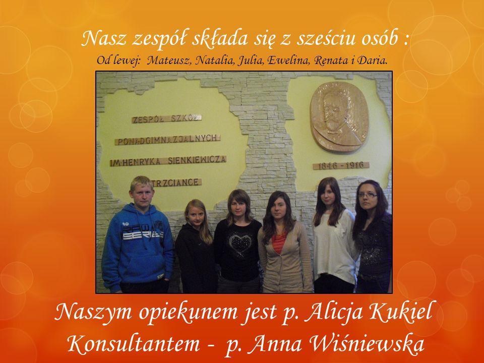 Nasz zespół składa się z sześciu osób : Od lewej: Mateusz, Natalia, Julia, Ewelina, Renata i Daria. Naszym opiekunem jest p. Alicja Kukiel Konsultante
