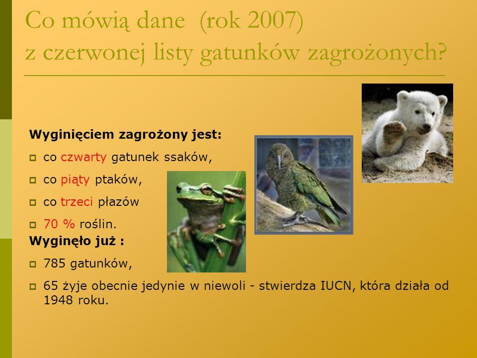 Co mówią dane (rok 2007) z czerwonej listy gatunków zagrożonych? Wyginięciem zagrożony jest:  co czwarty gatunek ssaków,  co piąty ptaków,  co trze