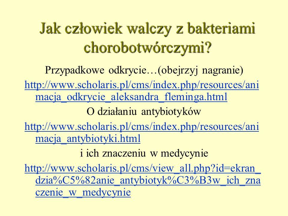 Jak człowiek walczy z bakteriami chorobotwórczymi? Przypadkowe odkrycie…(obejrzyj nagranie) http://www.scholaris.pl/cms/index.php/resources/ani macja_