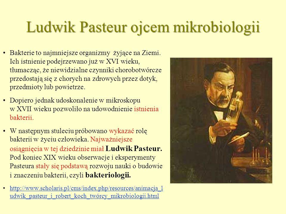 Ludwik Pasteur ojcem mikrobiologii Bakterie to najmniejsze organizmy żyjące na Ziemi. Ich istnienie podejrzewano już w XVI wieku, tłumacząc, że niewid