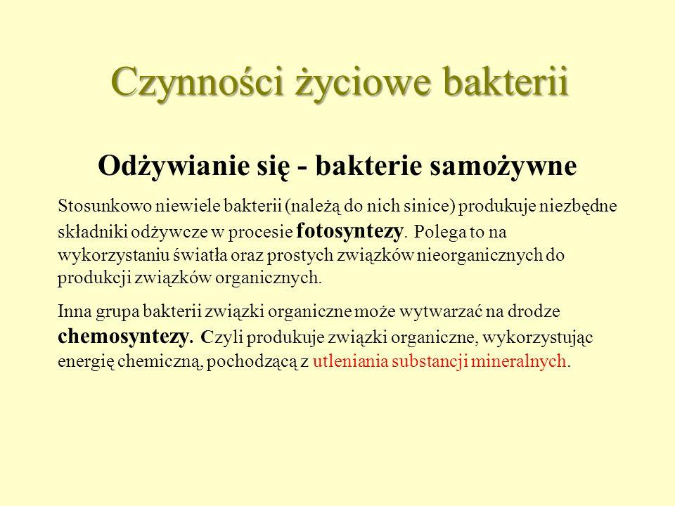 Chemosynteza Przykłady bakterii chemosyntetyzujących Bakterie nitryfikacyjne, utleniająBakterie nitryfikacyjne, utleniają amoniak i sole amonowe  sole kwasu azotowego (III) sole kwasu azotowego (III)  sole kwasu azotowego (V) Bakterie siarkowe utleniająBakterie siarkowe utleniają siarkowodór  wolna siarka wolna siarka  sole kwasu siarkowego (VI)