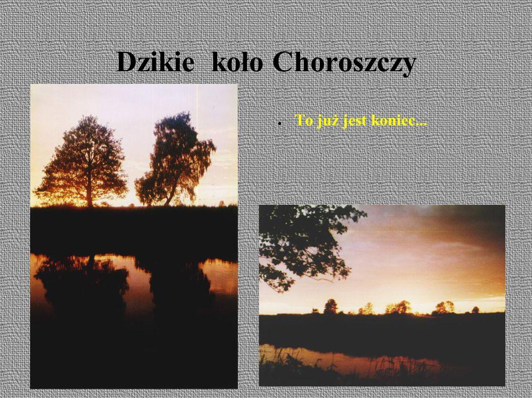 Choroszcz & Białystok ● OKW - rajd rajdem ale patriotyczny obowiązek spełnić trzeba.