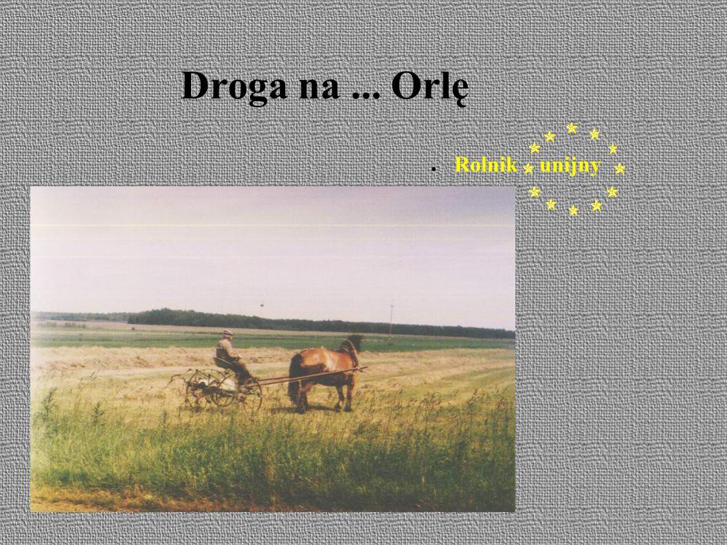 Droga na... Orlę ● Rolnik unijny
