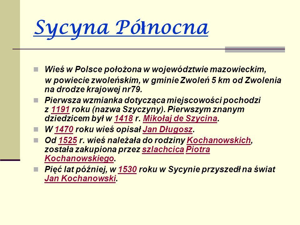 Panorama Sycyny