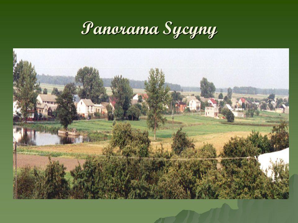 Sycyna – miejsce narodzin Jana Kochanowskiego Jeden z krewnych Jana Kochanowskiego wystawił w 1621 roku obelisk upami ę tniaj ą cy zwyci ę stwo nad Turkami pod Chocimiem.