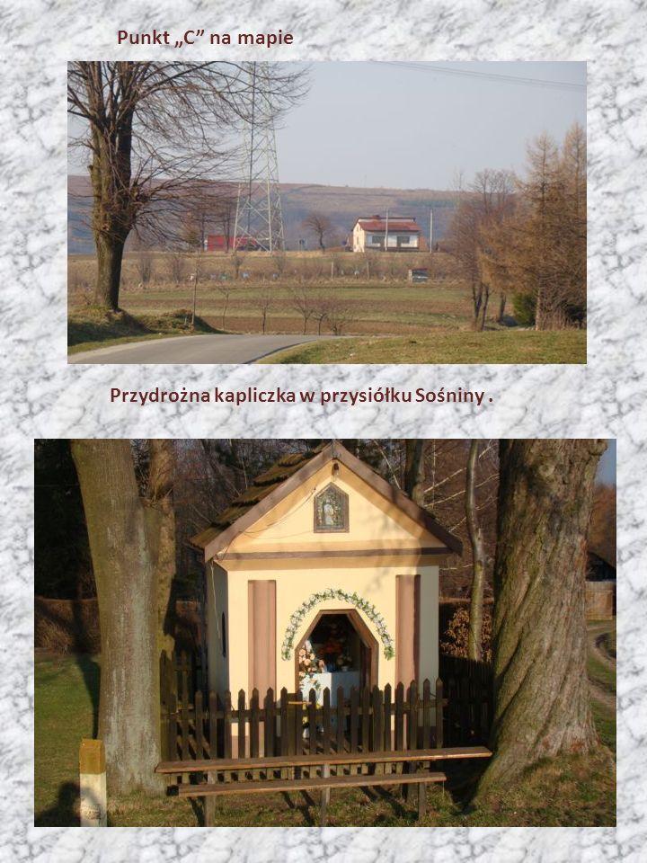 """Punkt """"C"""" na mapie Przydrożna kapliczka w przysiółku Sośniny."""
