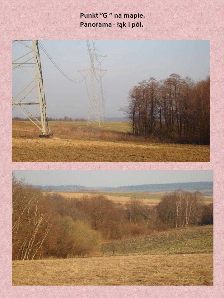 """Punkt """"G """" na mapie. Panorama - łąk i pól."""
