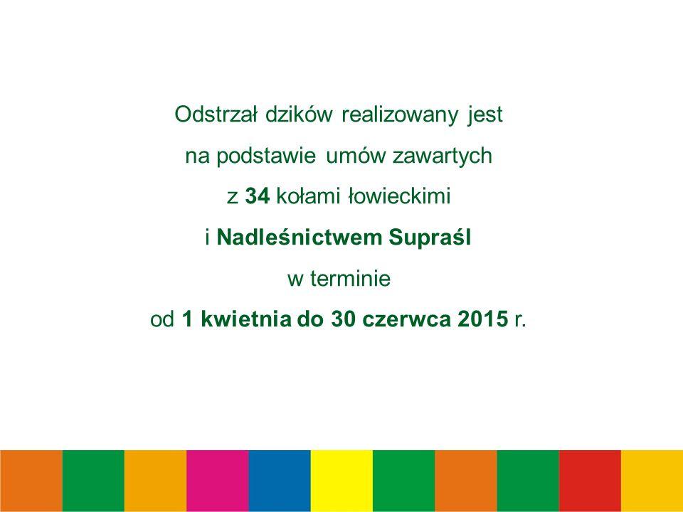 Odstrzał dzików realizowany jest na podstawie umów zawartych z 34 kołami łowieckimi i Nadleśnictwem Supraśl w terminie od 1 kwietnia do 30 czerwca 2015 r.