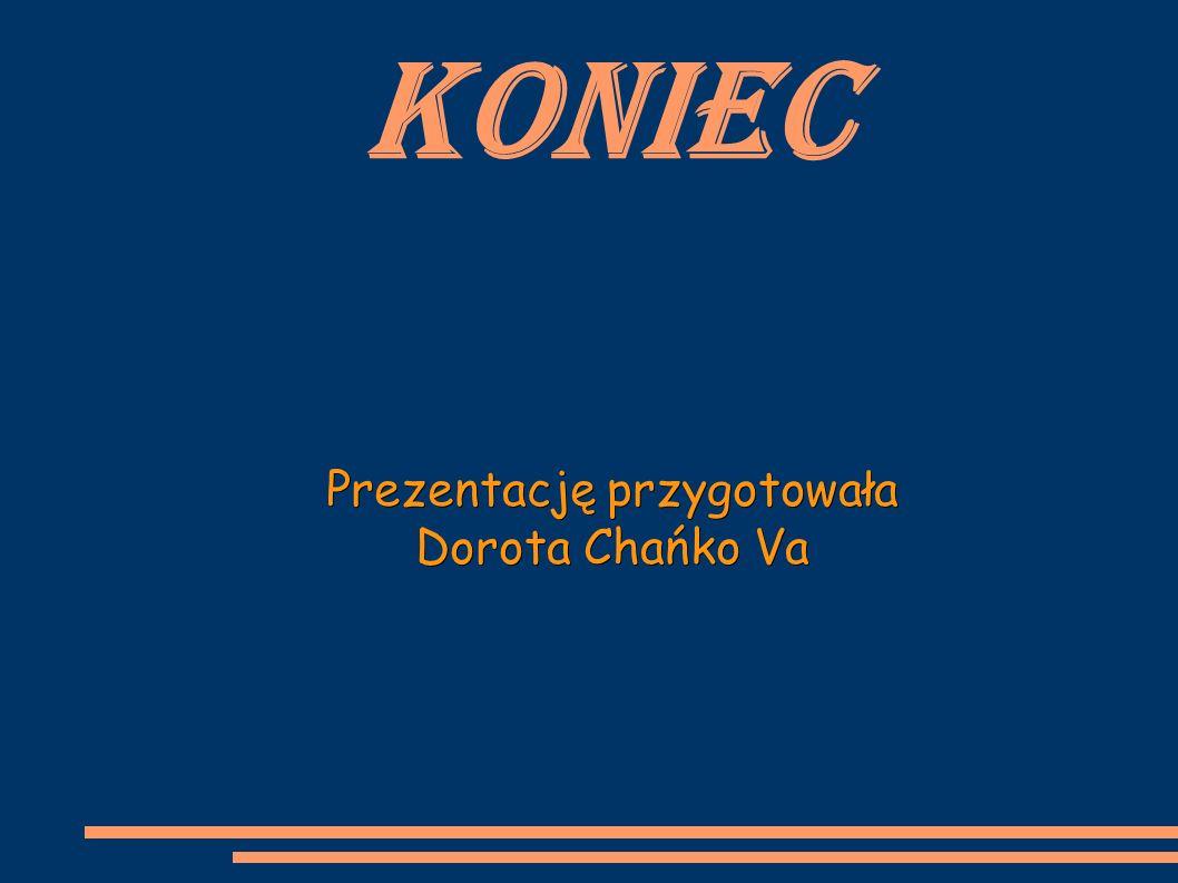 Koniec Prezentację przygotowała Dorota Chańko Va