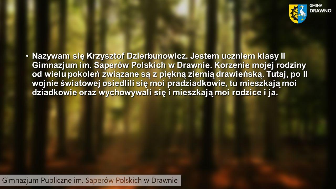Nazywam się Krzysztof Dzierbunowicz. Jestem uczniem klasy II Gimnazjum im.