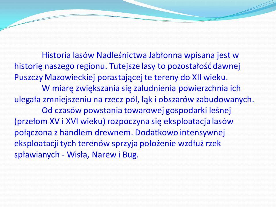 Historia lasów Nadleśnictwa Jabłonna wpisana jest w historię naszego regionu.