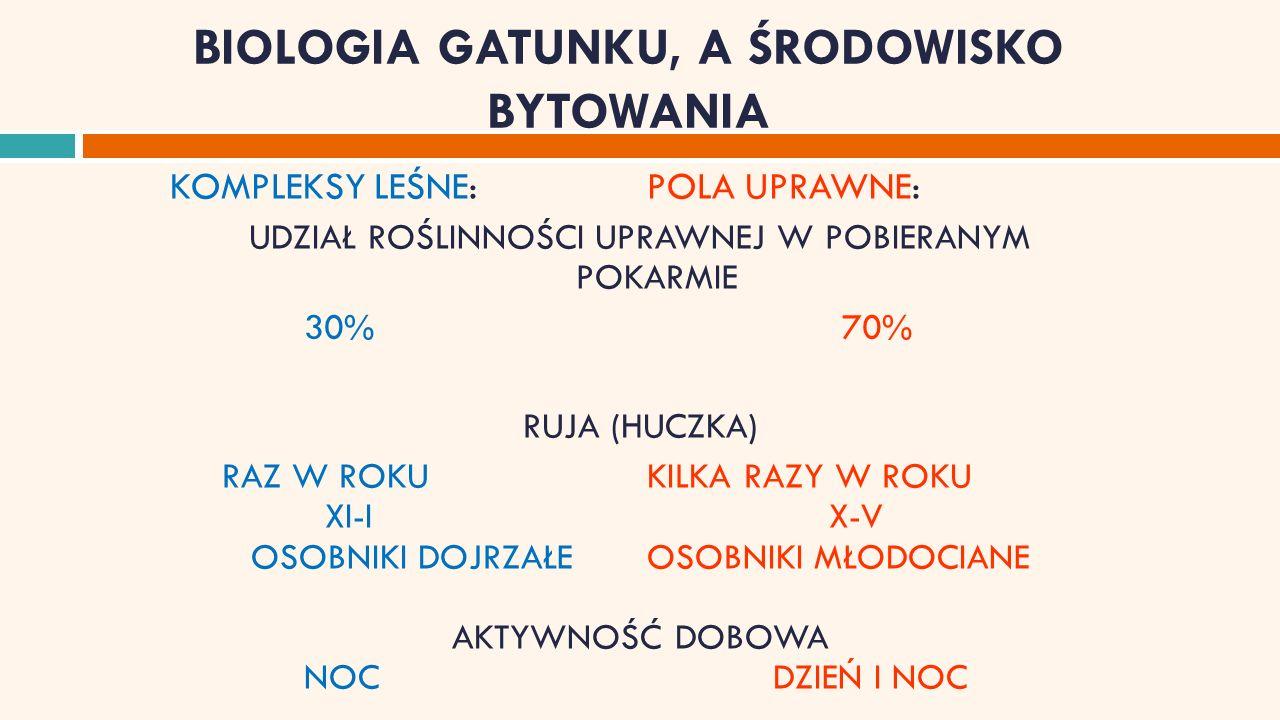 STAN I POZYSKANIE DZIKÓW W SEZONACH 2001/2002-2008/2009