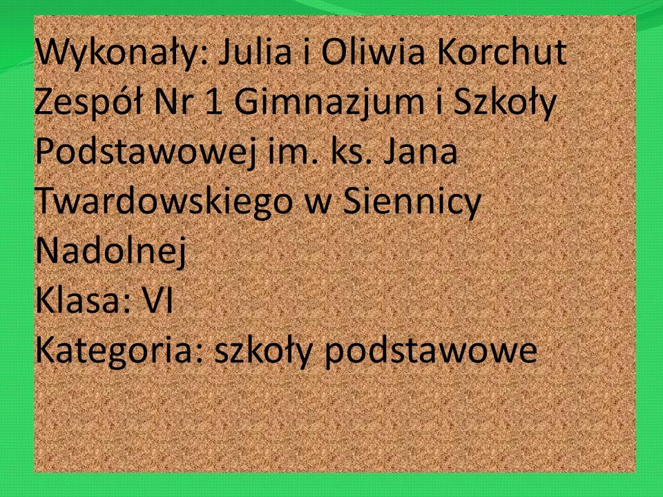 Wykonały: Julia i Oliwia Korchut Zespół Nr 1 Gimnazjum i Szkoły Podstawowej im.