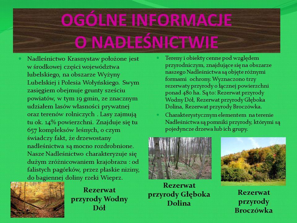 OGÓLNE INFORMACJE O NADLEŚNICTWIE Nadleśnictwo Krasnystaw położone jest w środkowej części województwa lubelskiego, na obszarze Wyżyny Lubelskiej i Polesia Wołyńskiego.