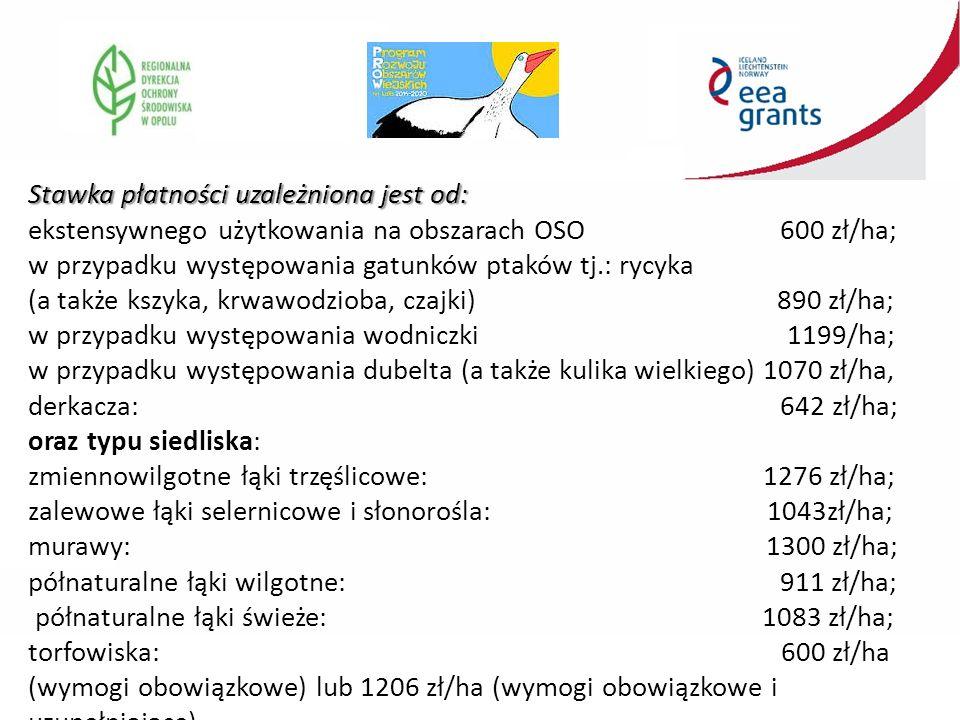 Stawka płatności uzależniona jest od: ekstensywnego użytkowania na obszarach OSO 600 zł/ha; w przypadku występowania gatunków ptaków tj.: rycyka (a także kszyka, krwawodzioba, czajki) 890 zł/ha; w przypadku występowania wodniczki 1199/ha; w przypadku występowania dubelta (a także kulika wielkiego) 1070 zł/ha, derkacza: 642 zł/ha; oraz typu siedliska: zmiennowilgotne łąki trzęślicowe: 1276 zł/ha; zalewowe łąki selernicowe i słonorośla: 1043zł/ha; murawy: 1300 zł/ha; półnaturalne łąki wilgotne: 911 zł/ha; półnaturalne łąki świeże: 1083 zł/ha; torfowiska: 600 zł/ha (wymogi obowiązkowe) lub 1206 zł/ha (wymogi obowiązkowe i uzupełniające).