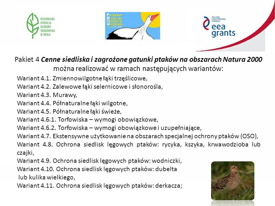 Pakiet 4 Cenne siedliska i zagrożone gatunki ptaków na obszarach Natura 2000 można realizować w ramach następujących wariantów: Wariant 4.1.