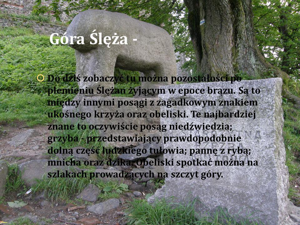Góra Ślęża -  Do dziś zobaczyć tu można pozostałości po plemieniu Ślężan żyjącym w epoce brązu. Są to między innymi posągi z zagadkowym znakiem ukośn