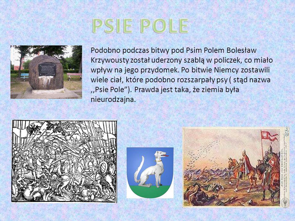 Podobno podczas bitwy pod Psim Polem Bolesław Krzywousty został uderzony szablą w policzek, co miało wpływ na jego przydomek.