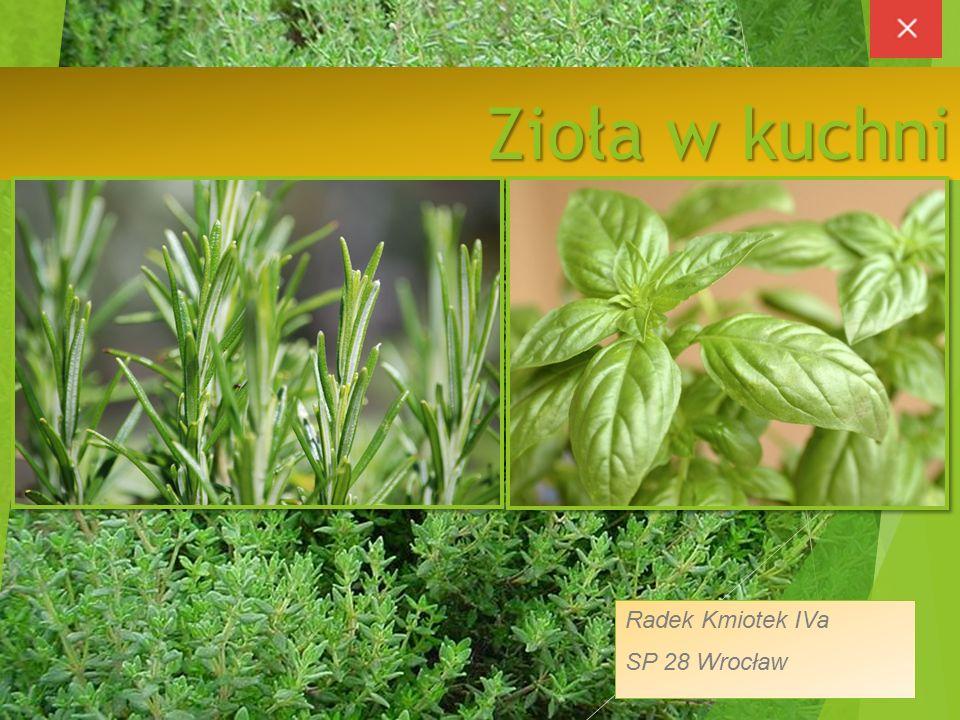 Zioła w kuchni Radek Kmiotek IVa SP 28 Wrocław