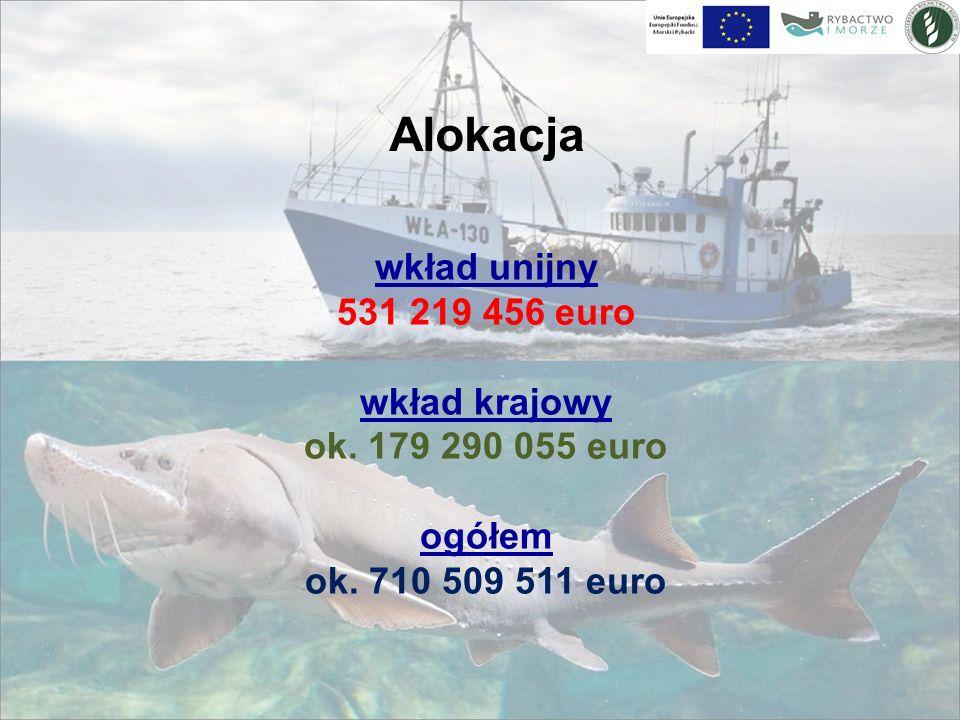 Alokacja wkład unijny 531 219 456 euro wkład krajowy ok.