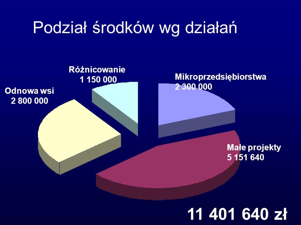 12 Odnowa wsi 2 800 000 Małe projekty 5 151 640 Różnicowanie 1 150 000 Mikroprzedsiębiorstwa 2 300 000 Podział środków wg działań 11 401 640 zł