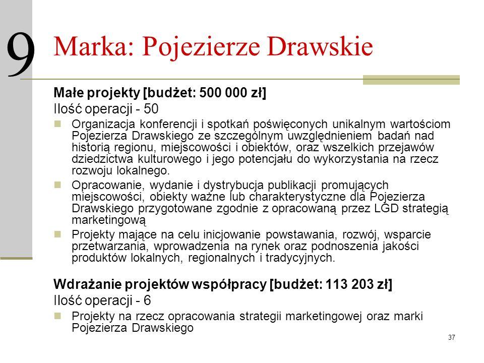 37 Marka: Pojezierze Drawskie Małe projekty [budżet: 500 000 zł] Ilość operacji - 50 Organizacja konferencji i spotkań poświęconych unikalnym wartości