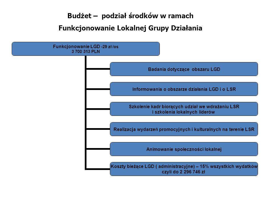 Budżet – podział środków w ramach Funkcjonowanie Lokalnej Grupy Działania Funkcjonowanie LGD -29 zł /os 3 700 313 PLN Badania dotyczące obszaru LGD In