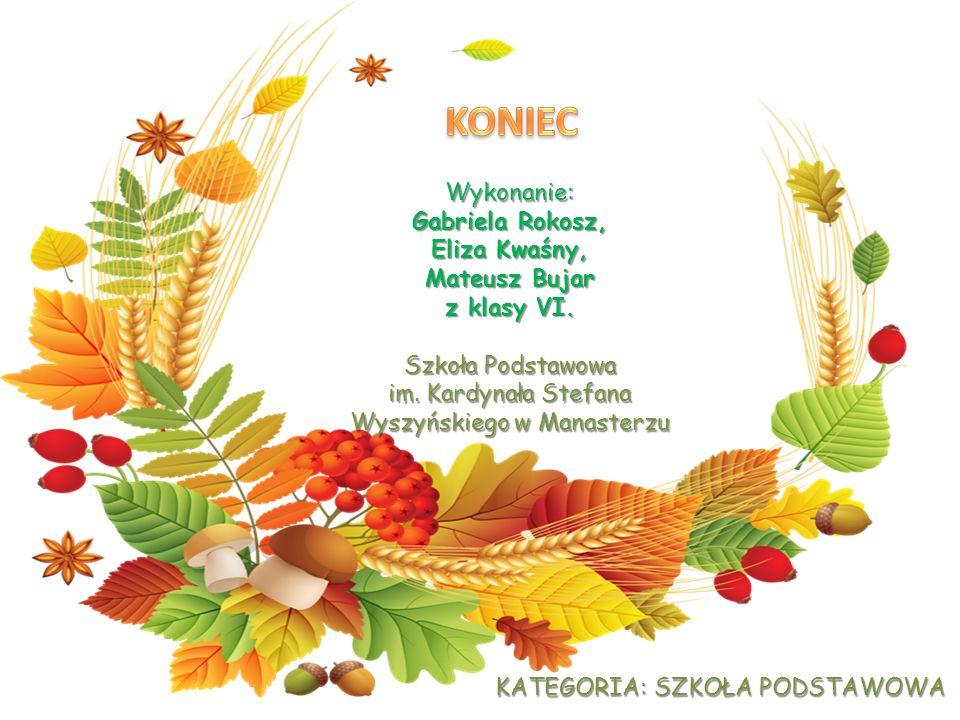 Wykonanie: Gabriela Rokosz, Eliza Kwaśny, Mateusz Bujar z klasy VI.