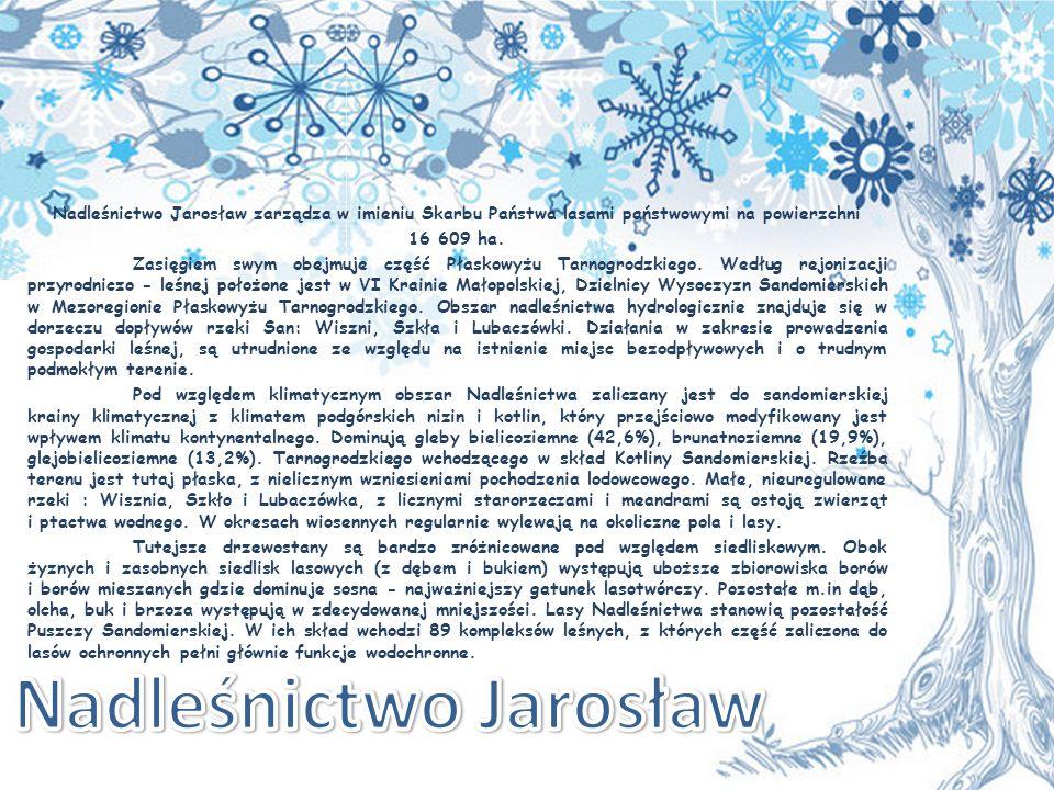 Nadleśnictwo Jarosław zarządza w imieniu Skarbu Państwa lasami państwowymi na powierzchni 16 609 ha.