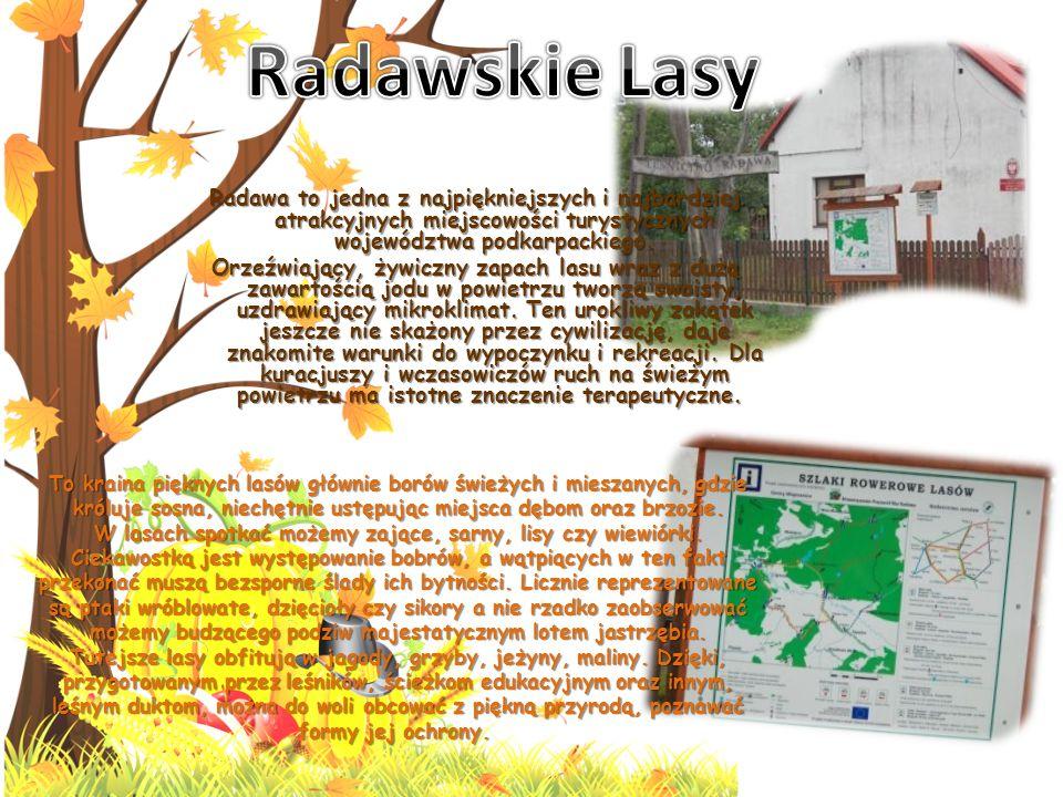 Radawa to jedna z najpiękniejszych i najbardziej atrakcyjnych miejscowości turystycznych województwa podkarpackiego.