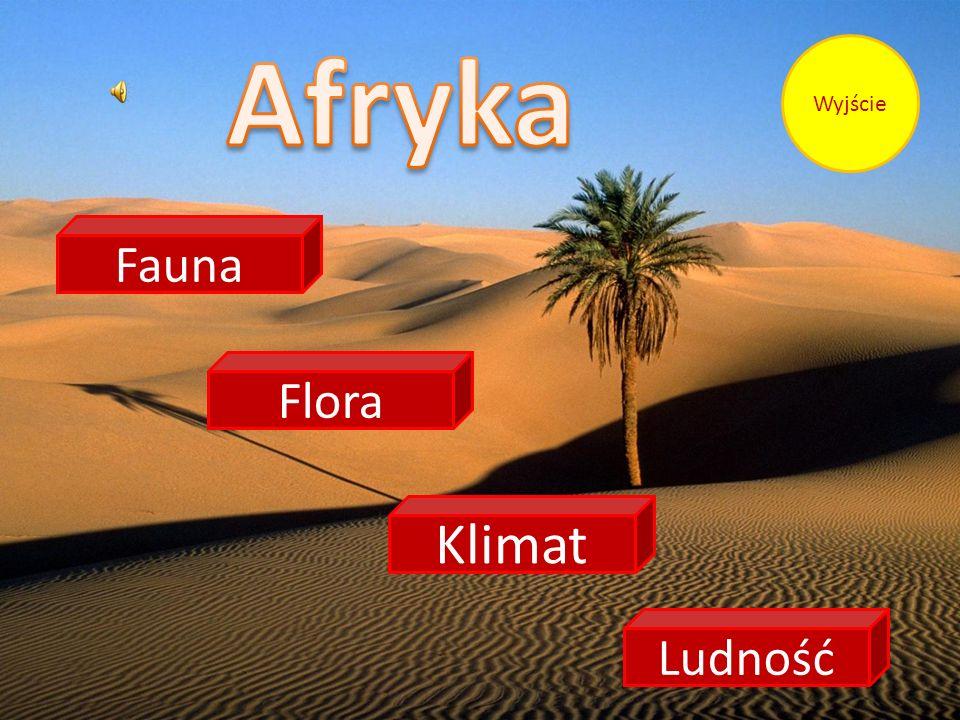 Obszar Afryki na południe od Sahary należy pod względem zoogeograficznym do krainy etiopskiej, na północ od Sahary - do obszaru śródziemnomorskiej krainy palearktycznej.