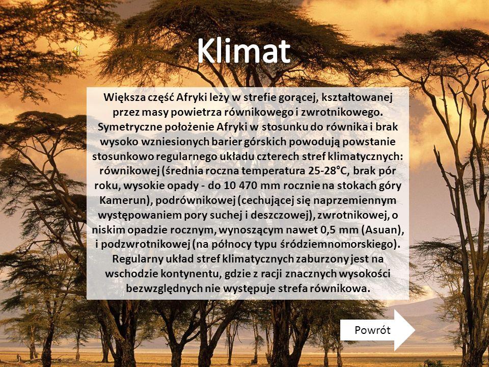 Większa część Afryki leży w strefie gorącej, kształtowanej przez masy powietrza równikowego i zwrotnikowego. Symetryczne położenie Afryki w stosunku d