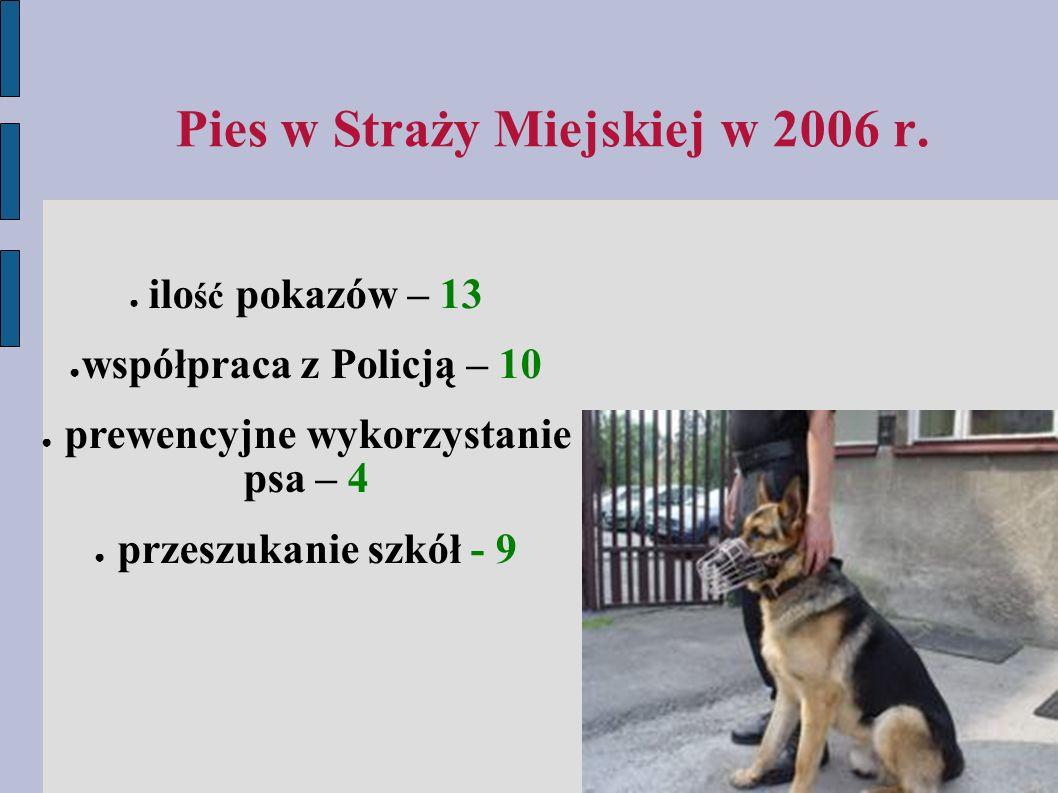 Pies w Straży Miejskiej w 2006 r.