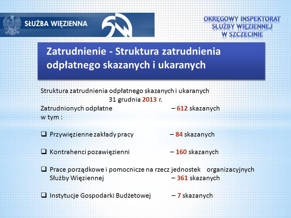 Zatrudnienie - Struktura zatrudnienia odpłatnego skazanych i ukaranych Struktura zatrudnienia odpłatnego skazanych i ukaranych 31 grudnia 2013 r.