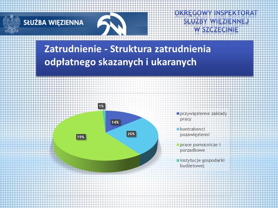 Zatrudnienie - Struktura zatrudnienia odpłatnego skazanych i ukaranych