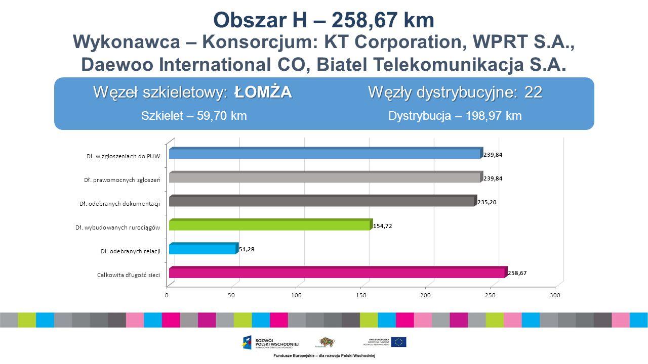 Obszar H – 258,67 km Wykonawca – Konsorcjum: KT Corporation, WPRT S.A., Daewoo International CO, Biatel Telekomunikacja S.A.