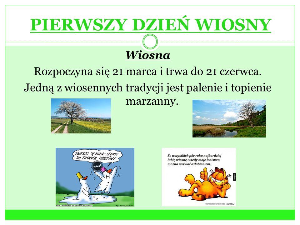 PIERWSZY DZIEŃ WIOSNY Wiosna Rozpoczyna się 21 marca i trwa do 21 czerwca. Jedną z wiosennych tradycji jest palenie i topienie marzanny.