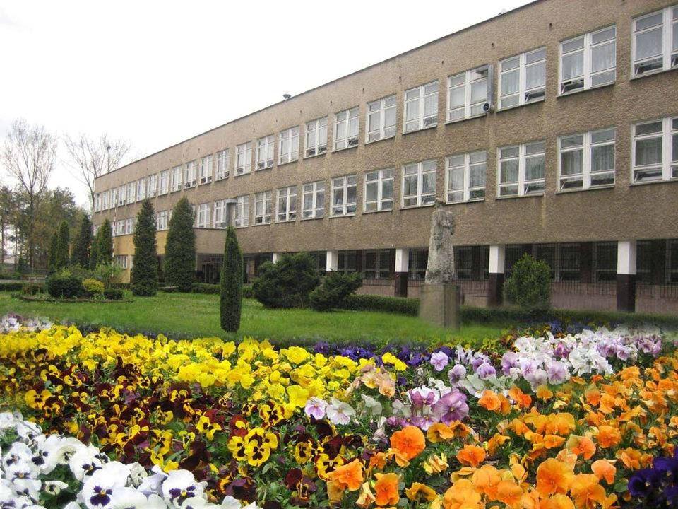 Sztandar szkoły