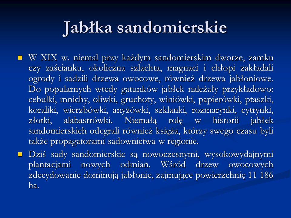 Jabłka sandomierskie W XIX w.
