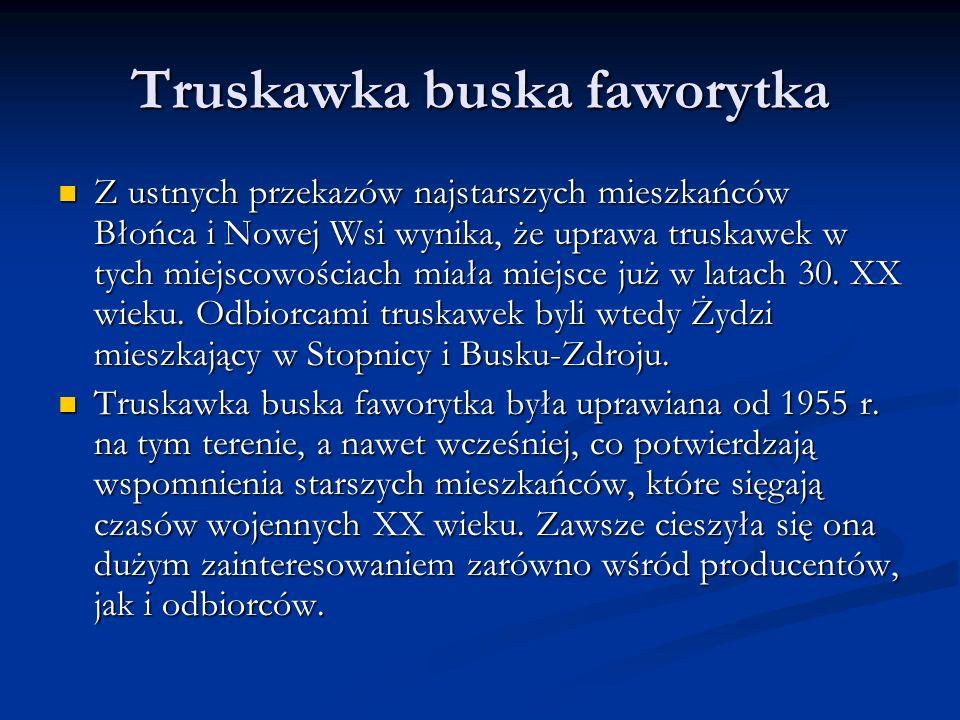 Truskawka buska faworytka Z ustnych przekazów najstarszych mieszkańców Błońca i Nowej Wsi wynika, że uprawa truskawek w tych miejscowościach miała miejsce już w latach 30.