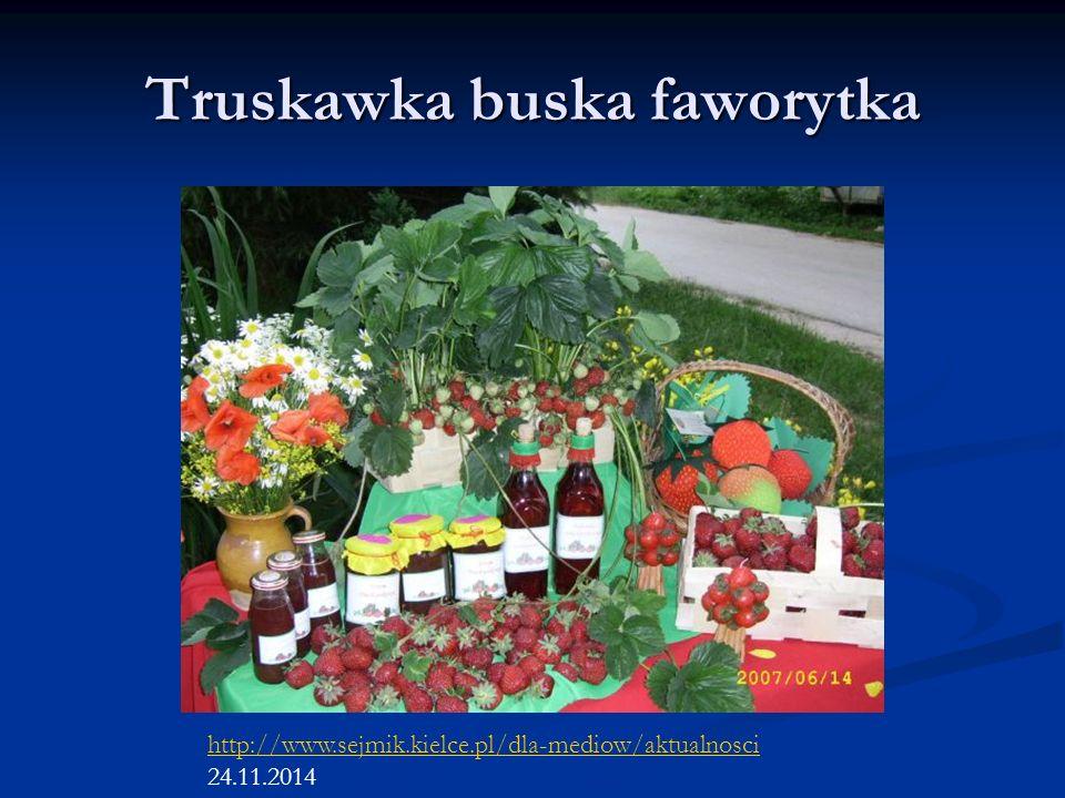 Truskawka buska faworytka http://www.sejmik.kielce.pl/dla-mediow/aktualnosci 24.11.2014