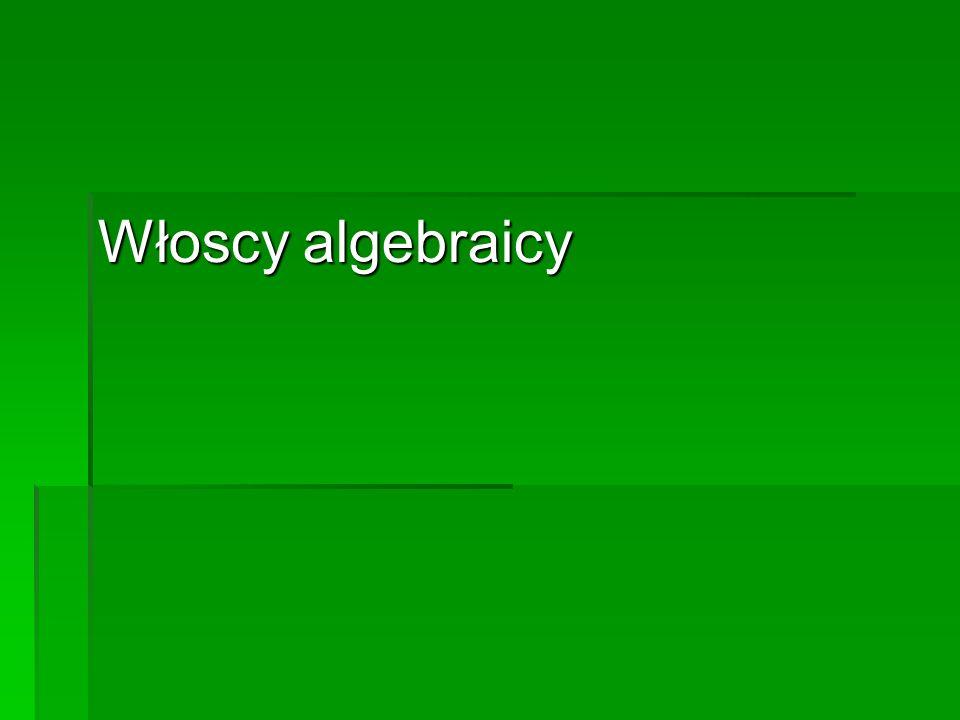 Włoscy algebraicy